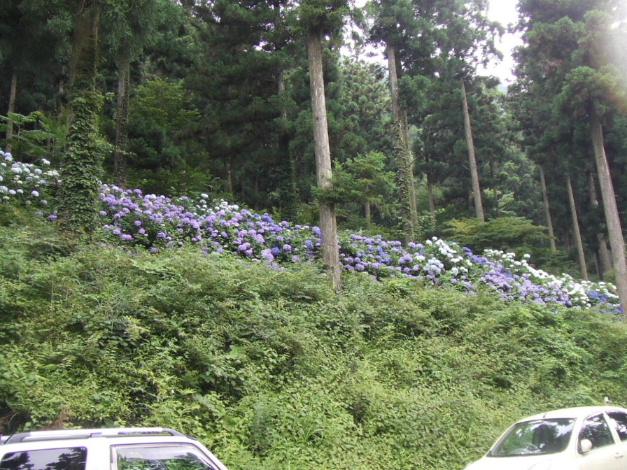 2008_0725風穴0006