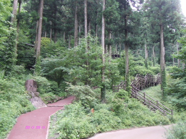 2008_0725風穴0031