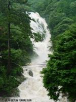 見帰りの滝(2009年7月25日)03
