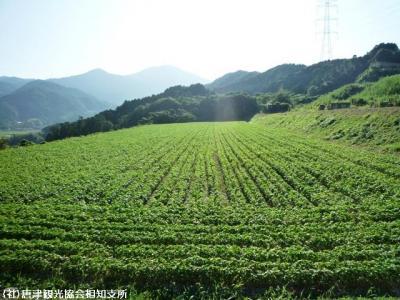 01.中山峠(2009年9月7日)