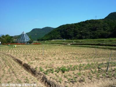 00.佐里温泉(2009年9月10日)
