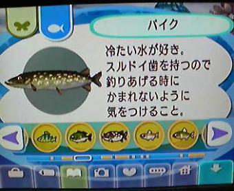 20081210120208