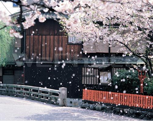 10_mizuno1.jpg