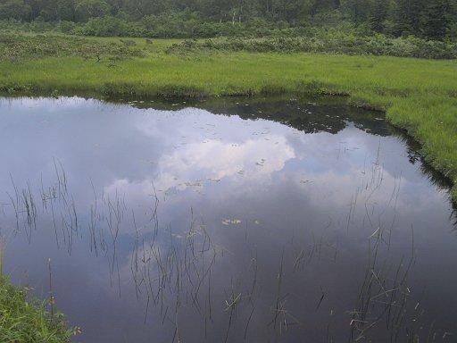 神仙沼付近