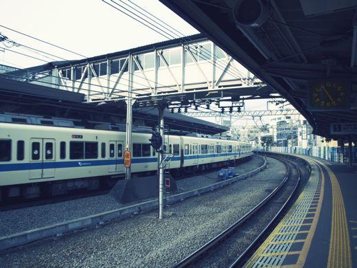 P7052945.jpg