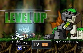 Maple0000_20090313192203.jpg