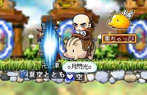 Maple0001_20090309121332.jpg