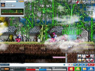 Maple0001_20090328123925.jpg