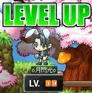 Maple0002_20081215225540.jpg