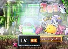 Maple0005_20090116164320.jpg