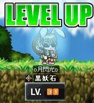 Maple0007_20081217092634.jpg