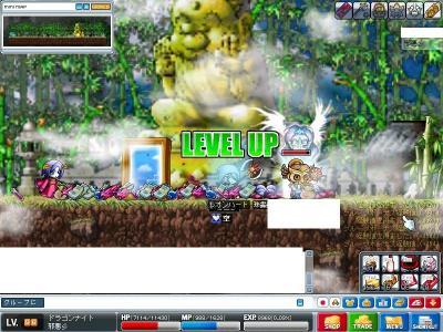 Maple0010_20090328123655.jpg