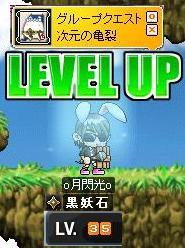 Maple0011_20081217093117.jpg
