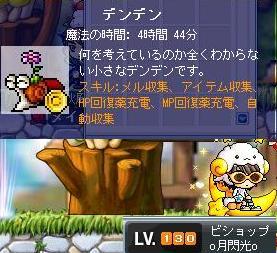 Maple0031_20090204213048.jpg