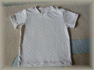 イカリTシャツ