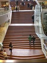 ビッグステップ大階段