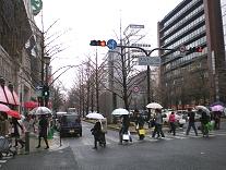 御堂筋横断歩道