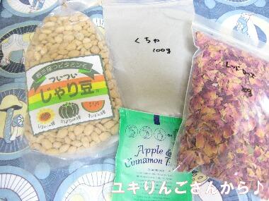 ユキりんごさんOPH21 3.24