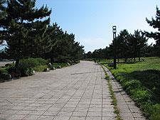 pota_2007_06_02_10.jpg