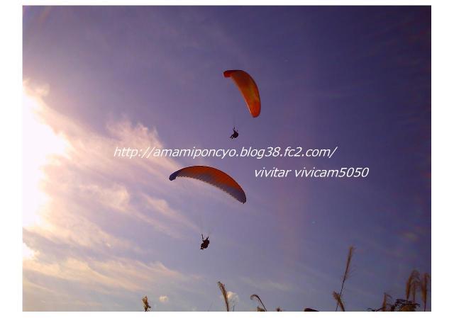 blog1_convert_20090601194304.jpg