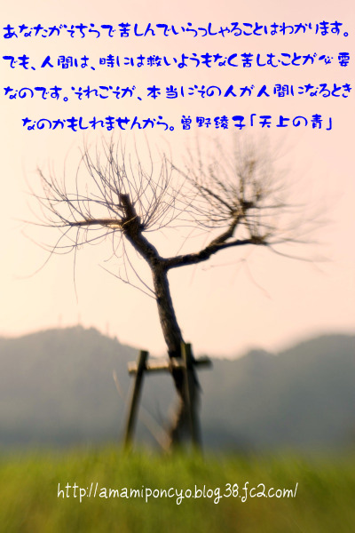 ki_20090906155300.jpg