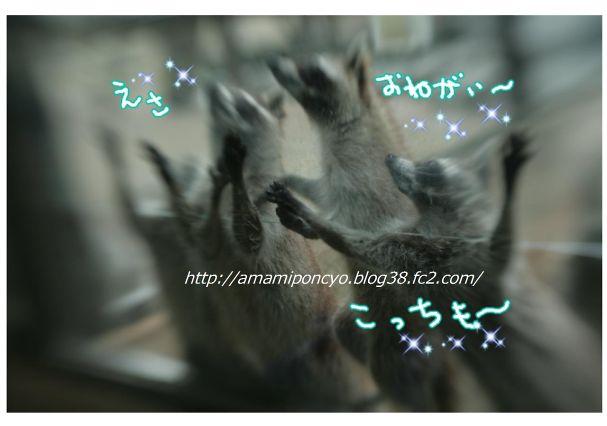 t_blog4.jpg