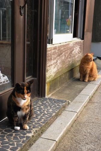 猫屋敷の前で