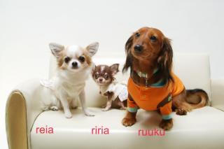chikafamily.jpg