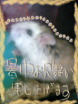 20070805181531.png