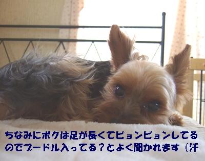 2009_0714220014.jpg