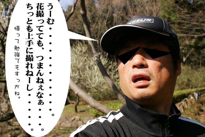 14_20080322214343.jpg