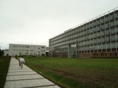 国文学研究資料館が入っている建物
