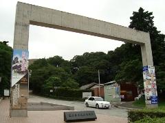 鳥居風の門