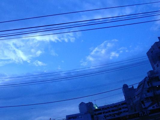 SC05894.jpg
