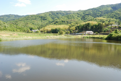 川島町溜池