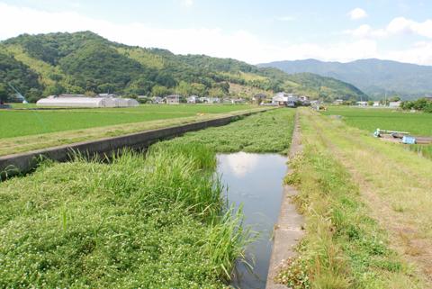 小松島新居見町用水路