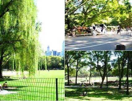 Central Park 0901