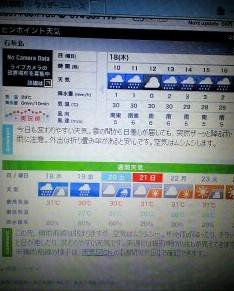 blog113.jpg