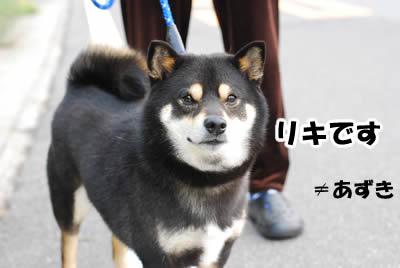 20080522_0039.jpg