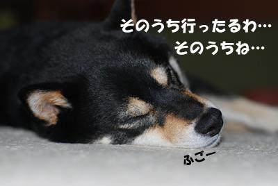 20080603_0015.jpg
