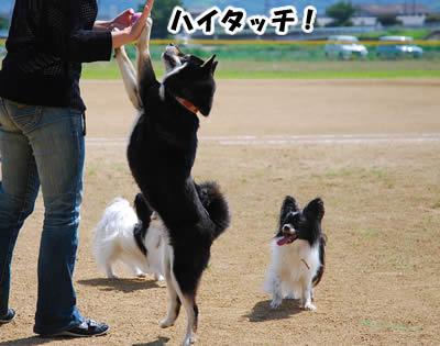 20080630_0106.jpg