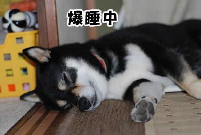 寝過ぎでは