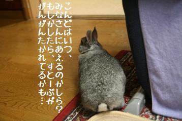 20090730_5.jpg