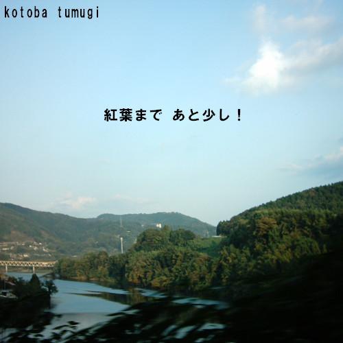 kouyo-1