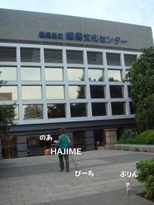 DSC05252.jpg