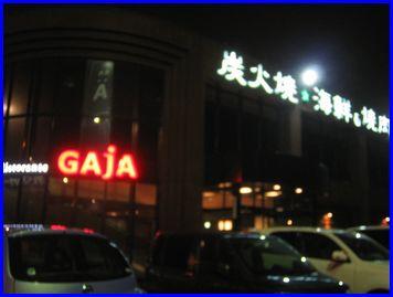 GAJA-2009-3-6-1.jpg