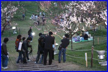 Hiraoka-2009-5-5-2.jpg