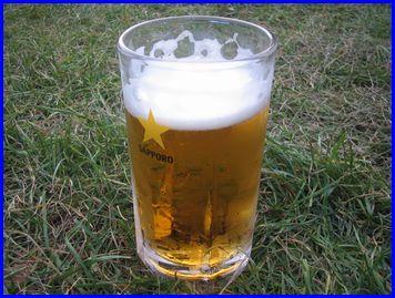 beer-2008-8-8-3.jpg