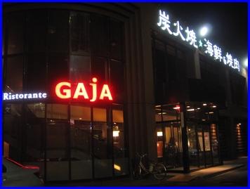 gaja-2009-6-5-1.jpg