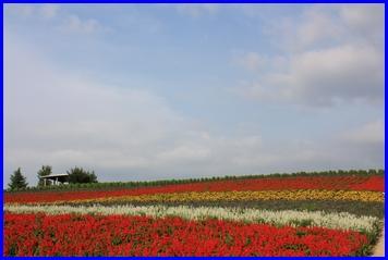 kanno-2009-8-2.jpg